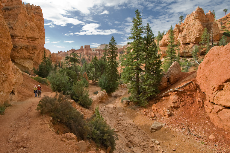 Navajo Loop in Bryce Canyon