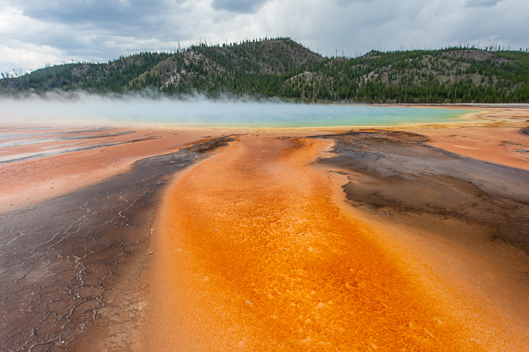 Yellowstone<br />Geyser e bisonti